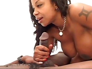 Kitten Smoking a BBC