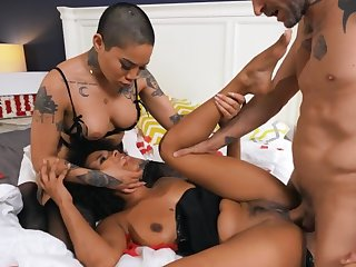 Asian barbies with playful mood receive the same cock in pussies
